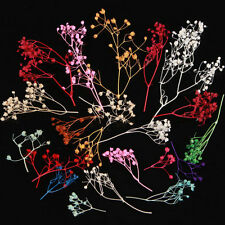 10PC Nail Art Tip Mixed Color 3D Real Dried Babysbreath Flower Decors For UV Gel