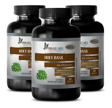 cholesterol and triglyceride supplements - HOLY BASIL 745MG 3B - holy basil diet