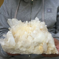 2322g Natural Clear White Quartz Crystal Cluster Rough Healing Mineral Specimen