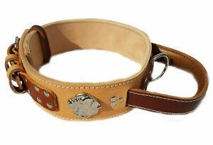 Two Tone Heavy Duty Dog Collar with American Bulldog Head Motif and Handle