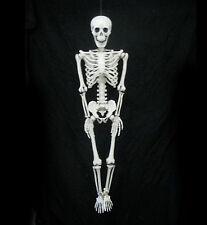 "Human Skeleton Hanging Haunted House Halloween Party Prop 36"""