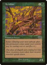 Magic MTG Tradingcard Urza's Saga 1998 Acridian 230/350