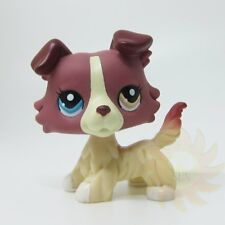 Littlest Pet Shop Collection LPS #1262 Plum Cream Collie Puppy Dog Toys A2