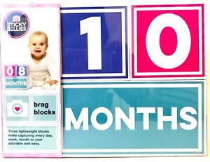Sticky Bellies 3 Lightweight Brag Blocks For Capturing Every Day Week Month Year
