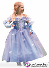 9-11 years Princess Fleur Childrens Costume by Travis Dress Up By Design