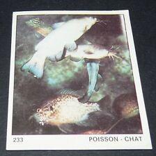 N°233 POISSON CHAT PANINI 1970 TOUS LES ANIMAUX EDITIONS DE LA TOUR