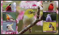 Palau 2017 MNH Colorful Birds of World Robin Cuckatoo Myna 6v M/S II Bird Stamps