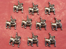 Tibetan Silver Dog Charms 10 per pack