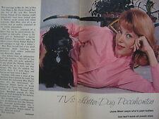 1963 TV Guide(JUNE  BLAIR/DAVID  NELSON/BEN  CASEY/TERRY MOORE//BETTYE ACKERMAN)