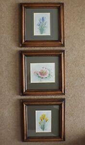 Set of 3 Original Watercolour Paintings