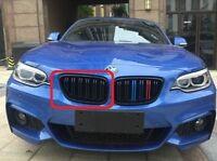 Neu Original BMW 2 F87 M2 Vorne Rechts M Performance Radiator Grill 2355448 OEM