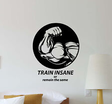 Train Insane or Remain the Same Wall Decal Vinyl Sticker Gym Decor Poster 746