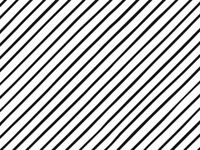 """BLACK PINSTRIPE Print Tissue Paper Sheets - 15"""" x 20"""" Choose Package Amount"""