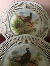 Pair of Early 20th Century Game Birds Ribbon Plates In Naturalistic Setting
