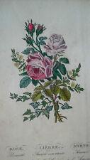 Latour Charlotte Le langage des fleurs