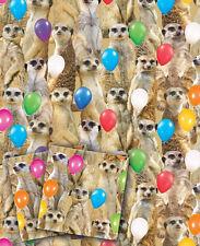 Meerkat Birthday Wrapping paper,meerkats,meercat,meercats,giftwrap