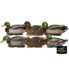 Avery Greenhead Gear Ghg Xd Series Pro Grade Mallard Duck Decoys Harvester 6 Pk