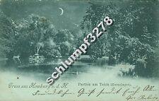 AK Karte 1898 Mondscheinkarte 61348 Gruss aus Homburg Teich Kuranlagen  (009)