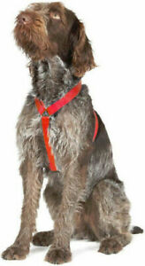 Ancol Nylon Dog Harness Red Small-anti pull