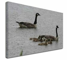 More details for geese+goslings in heavy rain x-large 30