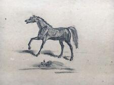 Cavallo NERO-BLACK HORSE-PER 1920 - 28 x 35 cm Guazzo