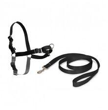 Petsafe Fácil a pie Arnés & 1.8m cable para extra Pequeño perros no tirar