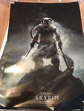 Skyrim Launch Poster