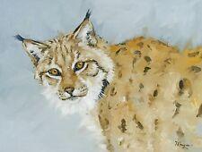Original Oil painting - wildlife art - realism - lynx - bobcat  - by j payne