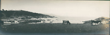 USA, Monterey (California) Vintage silver print. Panoramic View. Vue panoramique