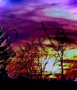 """SALE CooL Surreal 12""""x12"""" Art Photo Canvas. Choose 1 or a Combo maybe Get em All"""