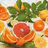 4 Motivservietten Servietten Napkins Tovaglioli Serviettentechnik Orangen (862)