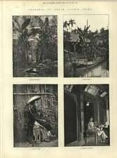 1883 bocetos de Annam Cochin China Nacional Interior Nativo Dama Aldea De Río