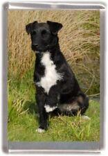 Patterdale Terrier  Fridge Magnet No 5 by Starprint