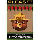 Smokey The Bear Framed Mirror Sign