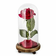 Beauty and the Beast Rose Kit, Red Silk Rose and Led Light with Fallen Petals