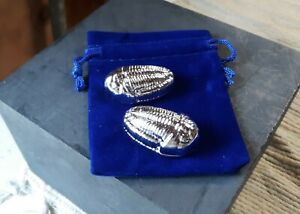 3oz  .999 Tin Trilobites in Royal Blue Velvet Gift Bags - Hand Poured