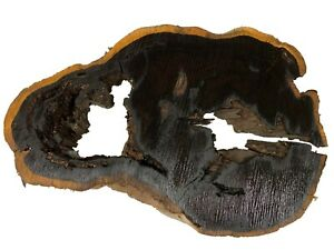 "Beautiful African Blackwood Live Edge Slab/Wood Blank 16""x11""x2-1/2"", #17"