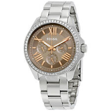 Fossil Cecile Taupe Dial Ladies Multifunction Watch AM4628