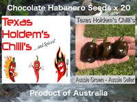 Chocolate Habanero x20 seeds. Chilli.  Smokey/earthy flavour. Australian Grown!