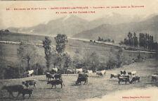 SAINT-PIERRE-DES-FORCATS 23 troupeau de vaches pic cambre-d'aze fromage