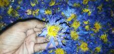 Sun Dried Blue Lotus Flower Nymphaea Caerulea Dried Flower Organic 100% Homemade