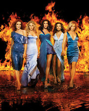 Desperate Housewives [Cast] (33856) 8x10 Photo