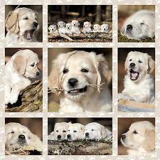 Puzzle Puzzel Hundekinder Hund Hunde Dog kids Welpen Schmidt Spiele 1000