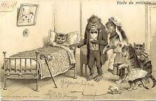 Gato, enfermos gato, mono como médico, prägekarte, 1908