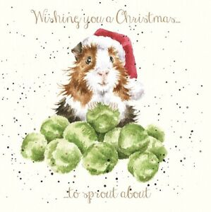 Wrendale Christmas Card Guinea pig sprouts