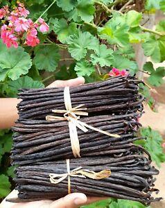 1 kg (>2lb) Fresh Madagascar Bourbon Organic Vanilla Whole Beans Grade A (Extra)