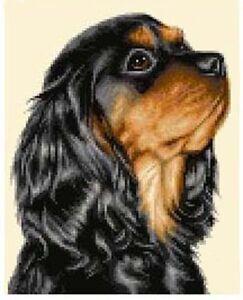 CAVALIER KING CHARLES SPANIEL dog cross stitch kit *Jann Designs