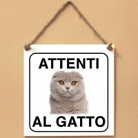 Scottish Fold 5 Attenti al gatto Targa gatto cartello ceramic tiles