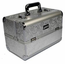 Professional Designer Vanity Case Beauty Storage Make up Box Silver Leaf Design