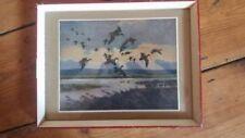 Vintage Birds Modern (1900-79) Date of Creation Art Prints
